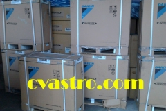 Foto0281-600 copy-600
